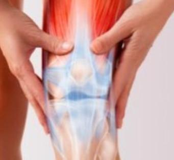 8月7日 如何改善膝關節問題講座