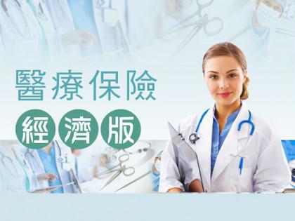 醫療保險 (經濟版)